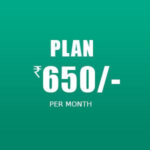 Plan 650/-